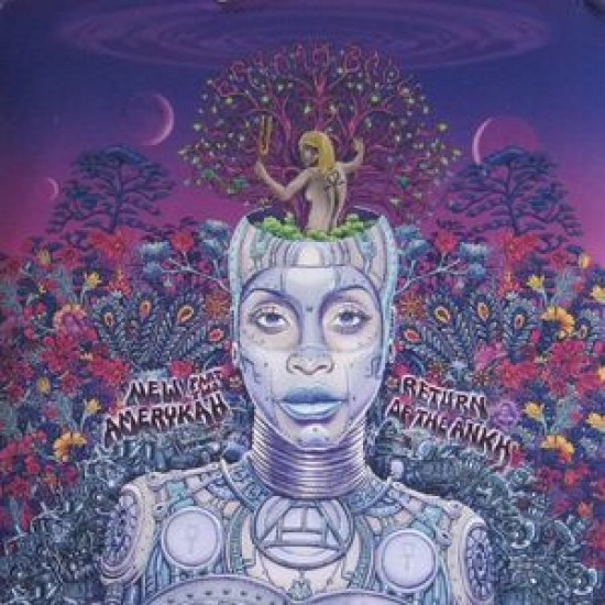 Erykah Badu - New Amerycah Part Two / Return of the Ankh (Vinyl)