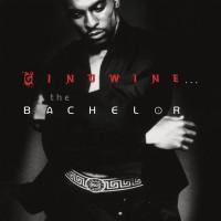 Ginuwine - Ginuwine... The Bachelor (Vinyl)