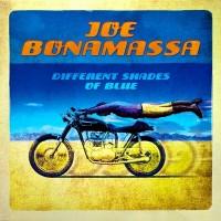 Joe Bonamassa – Different Shades Of Blue (Vinyl)