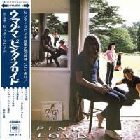 Pink Floyd - Ummagumma (Vinyl)