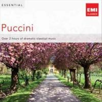 Puccini - Essential (CD)