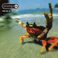 The Prodigy – The Fat Of The Land (CD)